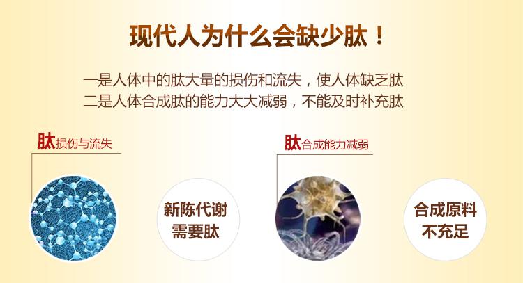 人參骨膠原小分子肽詳情_04.jpg